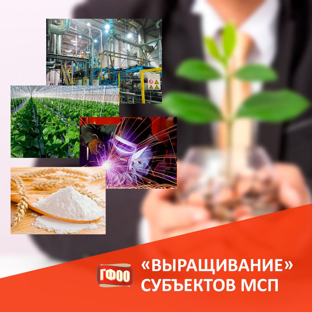 В Оренбургской области продолжается реализация программы по «выращиванию» субъектов МСП